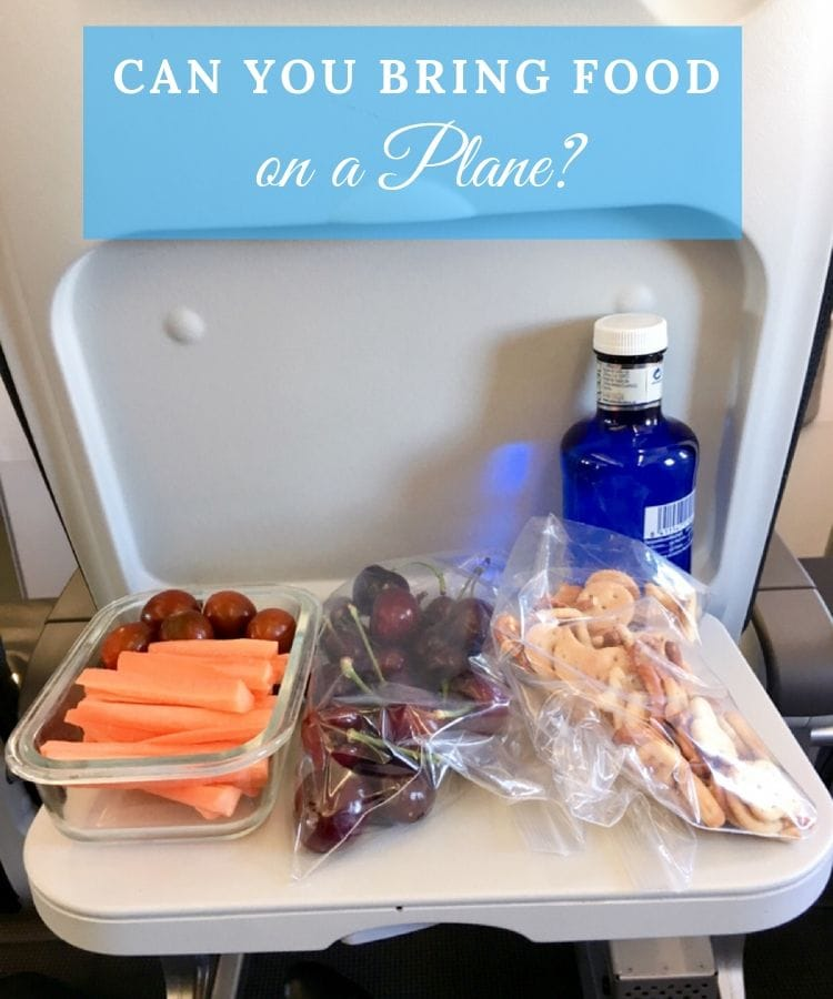 bringing food on a plane