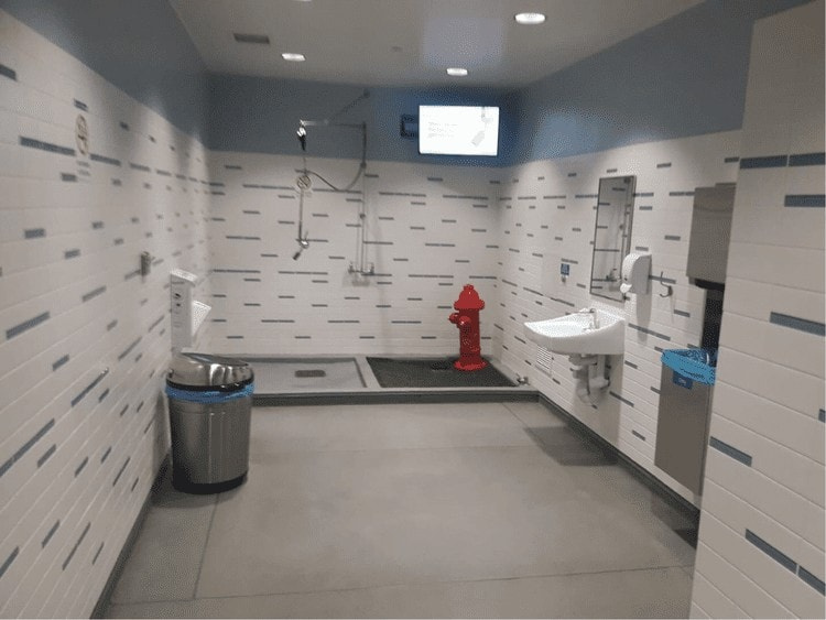 washington airport pet friendly restrooms