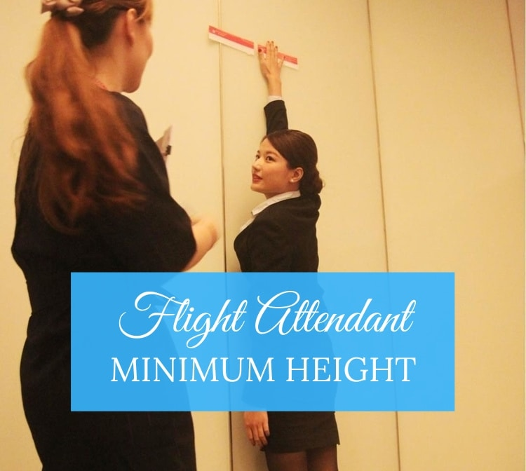 flight attendant minimum height