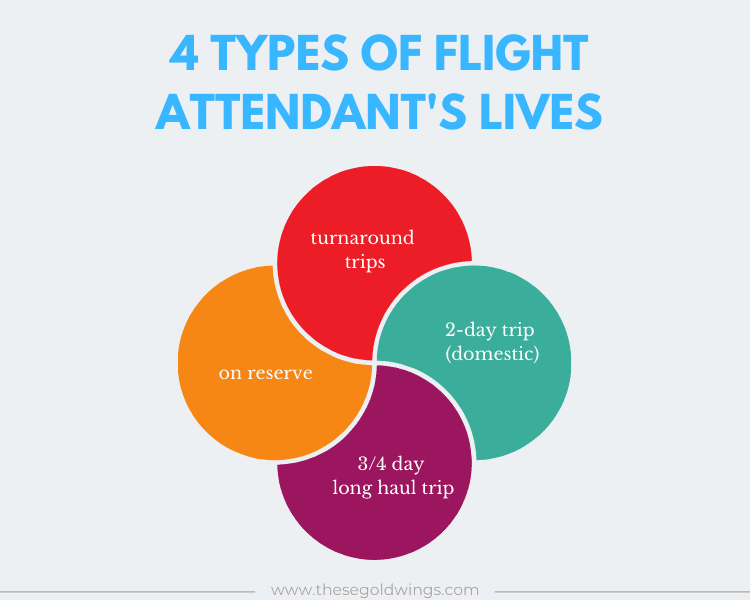 flight attendant types of lives