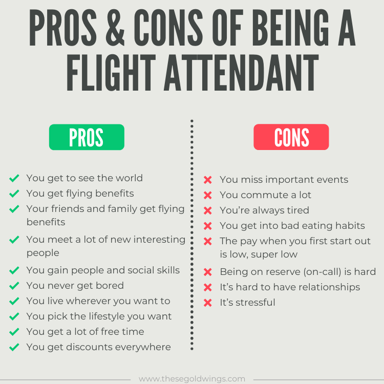 pros & cons flight attendant infographic